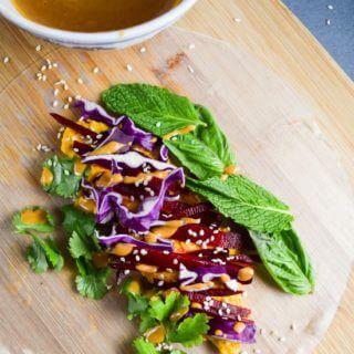 Rainbow Carrot Ginger Hummus Spring Rolls