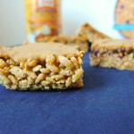 Vegan Pumpkin Pie Rice Krispie Bars {no-bake}