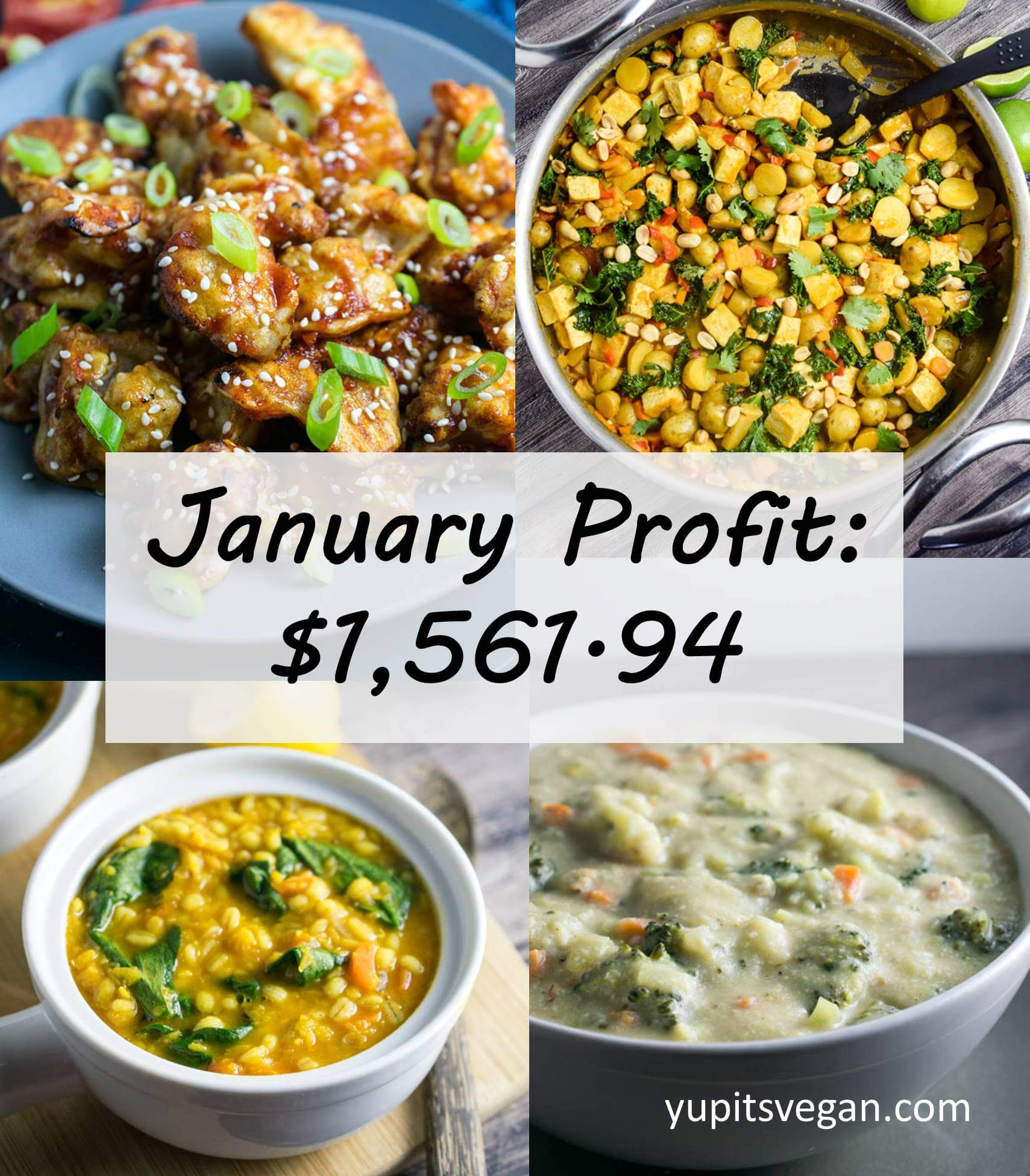 January 2017 Blog Income and Expenses | Yup, it's Vegan
