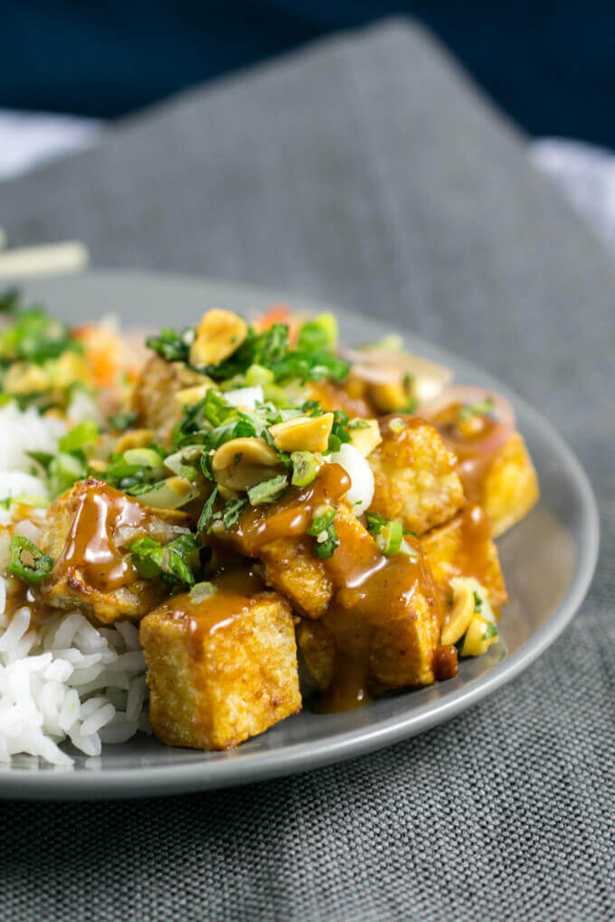 Close-up of tofu cubes drizzled with creamy Asian peanut sauce and garnished with more peanuts and cilantro