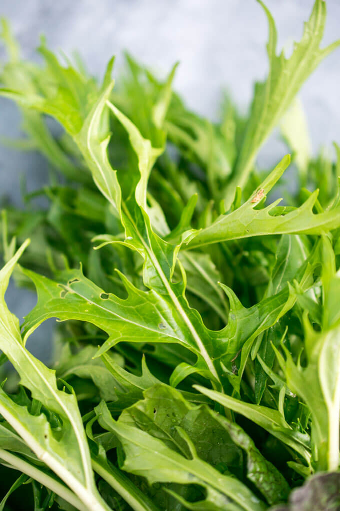 Closeup of raw mizuna leaves, which look like a cross between arugula and mustard greens.
